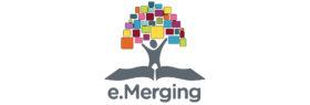 Silver – e.Merging Consultants